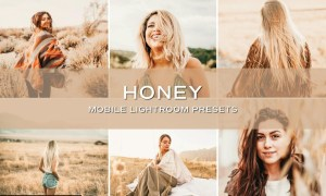 5 Golden Lightroom Presets 5701412