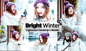 Bright Winter Lightroom Presets Mobile & Desktop
