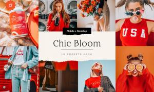 Chic Bloom – 4 Lightroom Presets Set 5347851