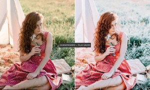 HummingBird Lightroom Presets Pack 5469110