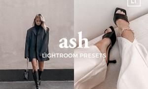 4 Lightroom Presets ASH 5486816
