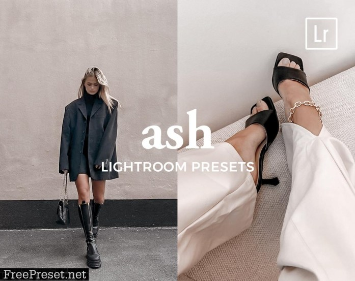 4 Lightroom Presets ASH 5486816