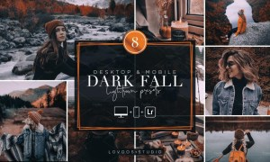 ARK FALL - Lightroom Presets 5782057