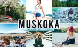 Muskoka Mobile & Desktop Lightroom Presets