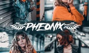 Phoenix Lightroom Preset - Aesthetic PRO Preset 29978276