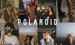 POLAROID Moody Film Vintage Presets 5673345