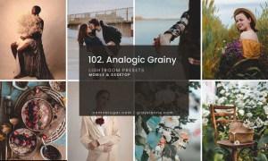 102. Analogic Grainy Presets 5158850