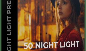 Dimitry Rogozhkin - Night Light Presets