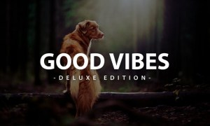 Good Vibes Deluxe Edition | Fro Mobile and Desktop