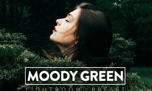 10 Moody Green Lightroom Presets