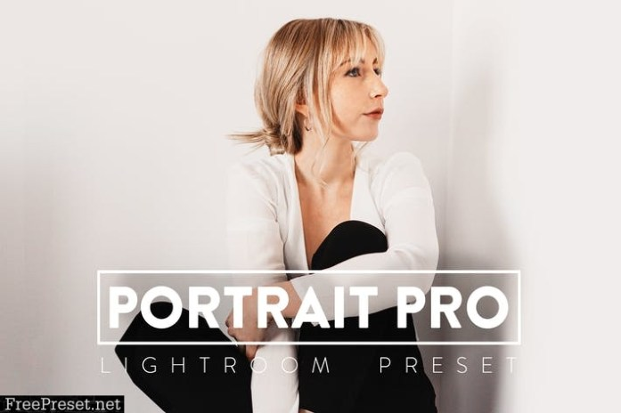 10 Portrait Pro Lightroom Presets SWHG2HJ