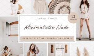 12 x Lightroom Minimalistic Nude 5962624