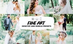 Fine art wedding lightroom presets 5953321