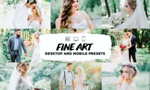 Fine art wedding lightroom presets