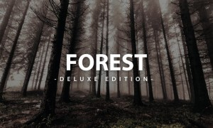 Forest Deluxe Edition   For Mobile and Desktop