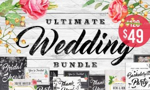 Massive Chalk Wedding Bundle 647459
