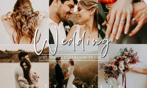 Moody Wedding Lightroom Presets 5977213
