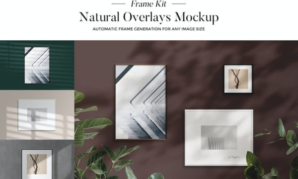 Natural Overlays - Frame Kit