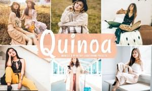 Quinoa Mobile & Desktop Lightroom Presets
