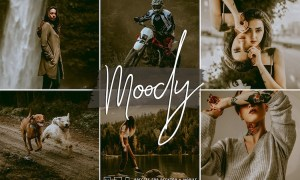 Signature Edits - Moody Vibes Lightroom Collection