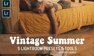 Vintage Summer Lightroom Presets 5045343