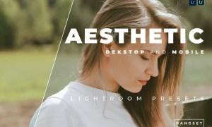 Aesthetic Desktop and Mobile Lightroom Preset