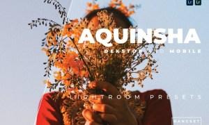 Aquinsha Desktop and Mobile Lightroom Preset