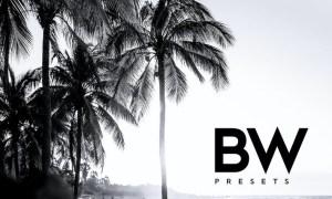 ARTA B&W Presets For Mobile and Desktop