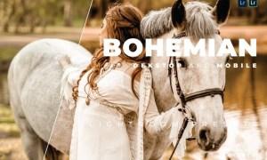Bohemian Desktop and Mobile Lightroom Preset