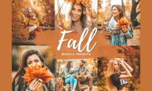 FALL VIBES Mobile Lightroom Presets 5712600