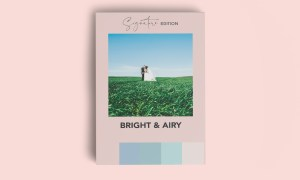SIGNATURE BRIGHT & AIRY LR PRESET 5999888