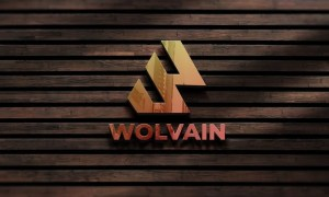 Wall Logo Mockup in Wood N2G262D