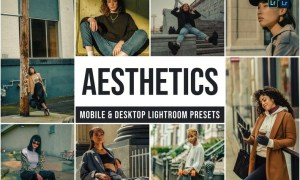Aesthetics Mobile and Desktop Lightroom Presets