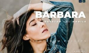 Barbara Desktop and Mobile Lightroom Preset