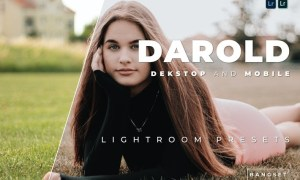 Darold Desktop and Mobile Lightroom Preset