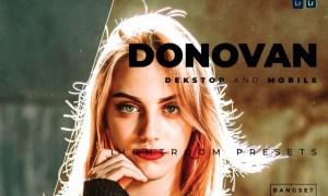 Donovan Desktop and Mobile Lightroom Preset