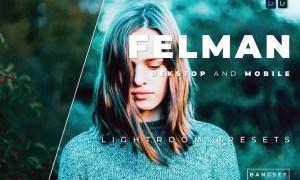 Felman Desktop and Mobile Lightroom Preset