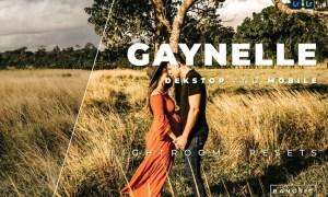 Gaynelle Desktop and Mobile Lightroom Preset