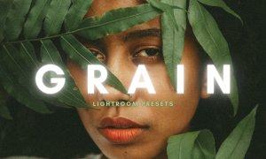 Grain Film Lightroom Presets 6051622