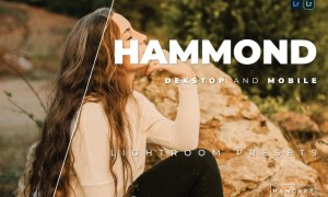 Hammond Desktop and Mobile Lightroom Preset