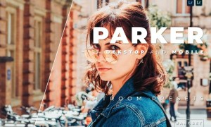Parker Desktop and Mobile Lightroom Preset