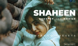 Shaheen Desktop and Mobile Lightroom Preset