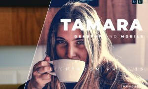 Tamara Desktop and Mobile Lightroom Preset