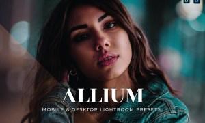 Allium Mobile and Desktop Lightroom Presets
