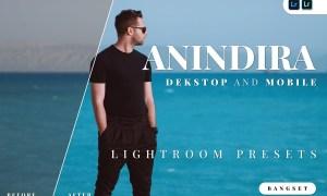 Anindira Desktop and Mobile Lightroom Preset