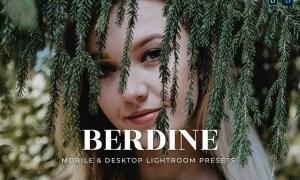 Berdine Mobile and Desktop Lightroom Presets