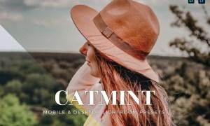 Catmint Mobile and Desktop Lightroom Presets