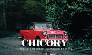 Chicory Mobile and Desktop Lightroom Presets