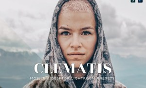 Clematis Mobile and Desktop Lightroom Presets