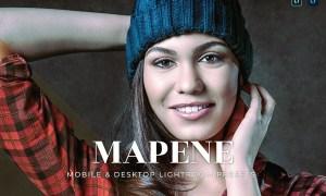 Mapene Mobile and Desktop Lightroom Presets